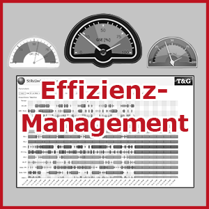 Effizienzmanagement 300px