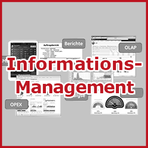 Informationsmanagement 300px